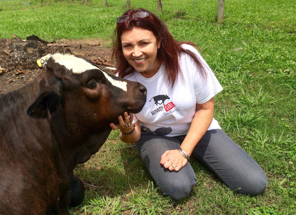 rancher's wife sitting with cow