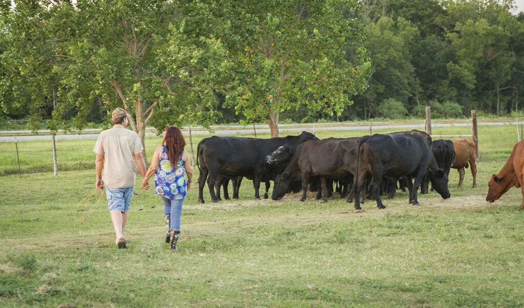 compassionate farming at Rowdy Girl Sanctuary