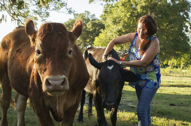Rancher's wife with cows